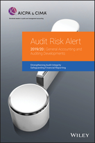 Audit Risk Alert - General Accounting and Auditing Developments 2019/2020