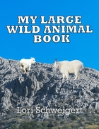 MY LARGE WILD ANIMAL BOOK