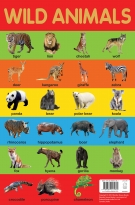Wild Animals Poster A3 Size
