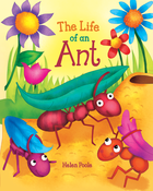 The Life of a Ant