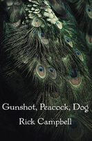 Gunshot, Peacock, Dog