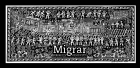 Migrar / To Migrate
