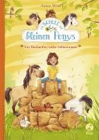The Little Pony School