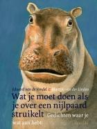 What to Do If You Stumble on a Hippopotamus