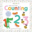 Hide-and-Seek Counting