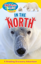 Factastic Phonics: In the North