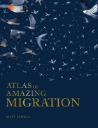 Atlas of Amazing Migration