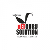 Netguru Solution India Pvt Ltd