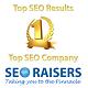 Seoraisers - Best SEO Company in Chandigarh