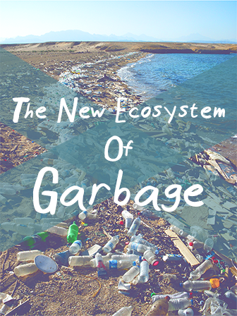 The New Ecosystem Of Garbage