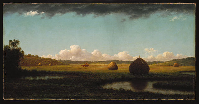 Martin Johnson Heade, Summer Showers, c. 1865-1870, Brooklyn Museum [Public Domain] via Wikimedia Commons
