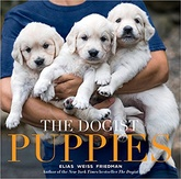 The Dogist: Puppies