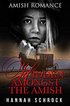 Hidden Amongst the Amish