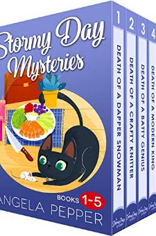 Stormy Day Mysteries (Series Bundle)