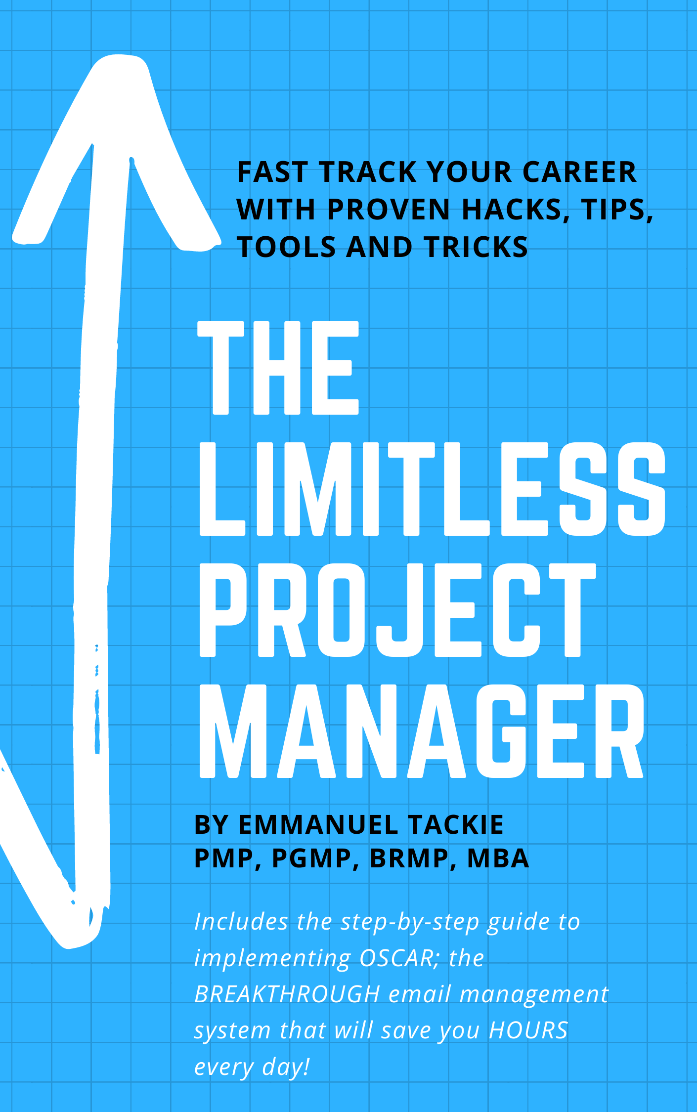 The Limitless Project Manager