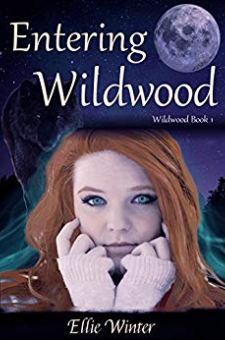 Entering Wildwood