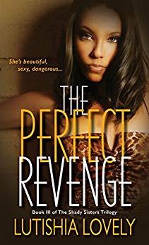 The Perfect Revenge