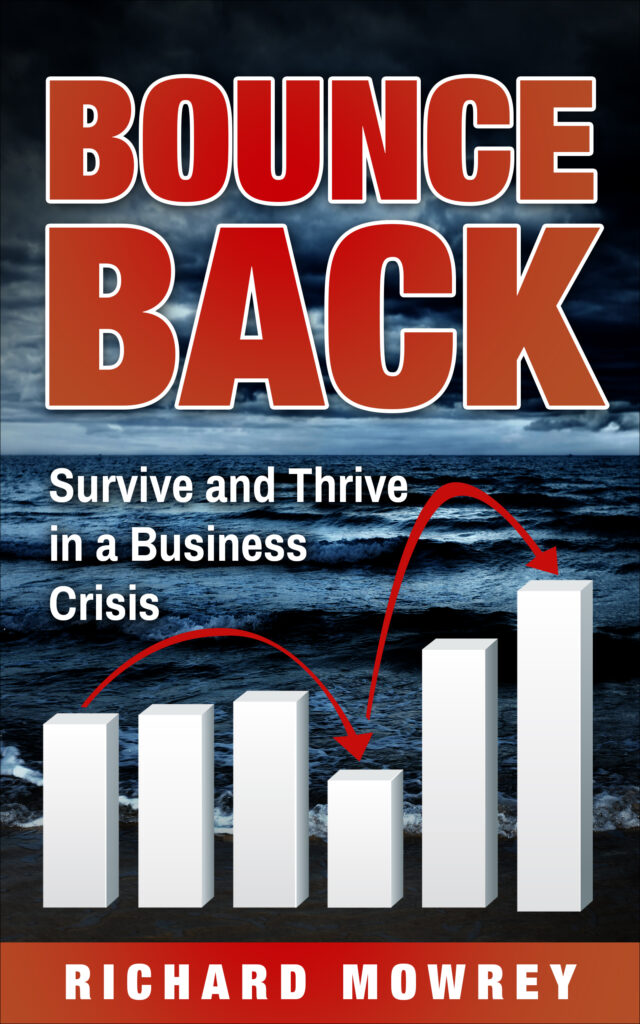 Bounce Back: Survive and Thrive in a Business Crisis
