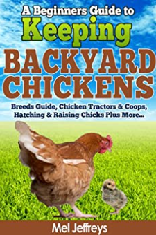 A Beginners Guide to Keeping Backyard Chickens