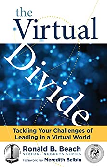 The Virtual Divide