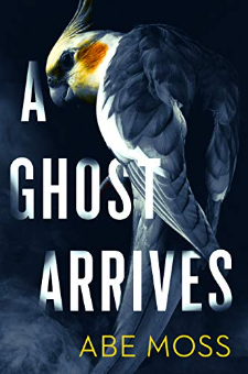 A Ghost Arrives