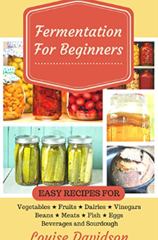 Fermentation for Beginners