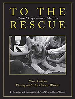 To the Rescue by Elise Lufkin