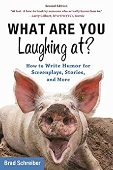 What Are You Laughing At? by Brad Schreiber