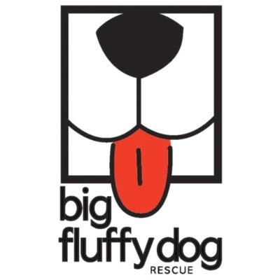 Bigfluffydogpropic