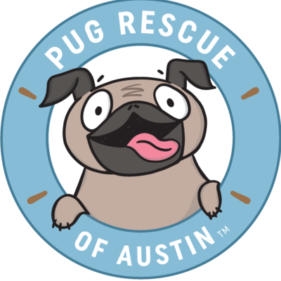 Pug rescue  converted  2