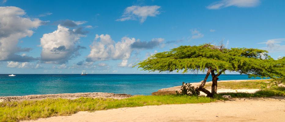 Luxury Yacht Charter Aruba Divi Divi