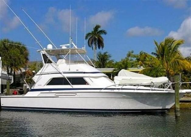 1990 BERTRAM 50 Motor Yacht 849966