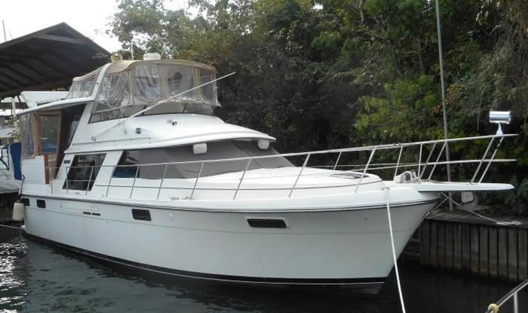 1988 CARVER 4207 Aft Cabin Motor Yacht Motor Yacht 1144374