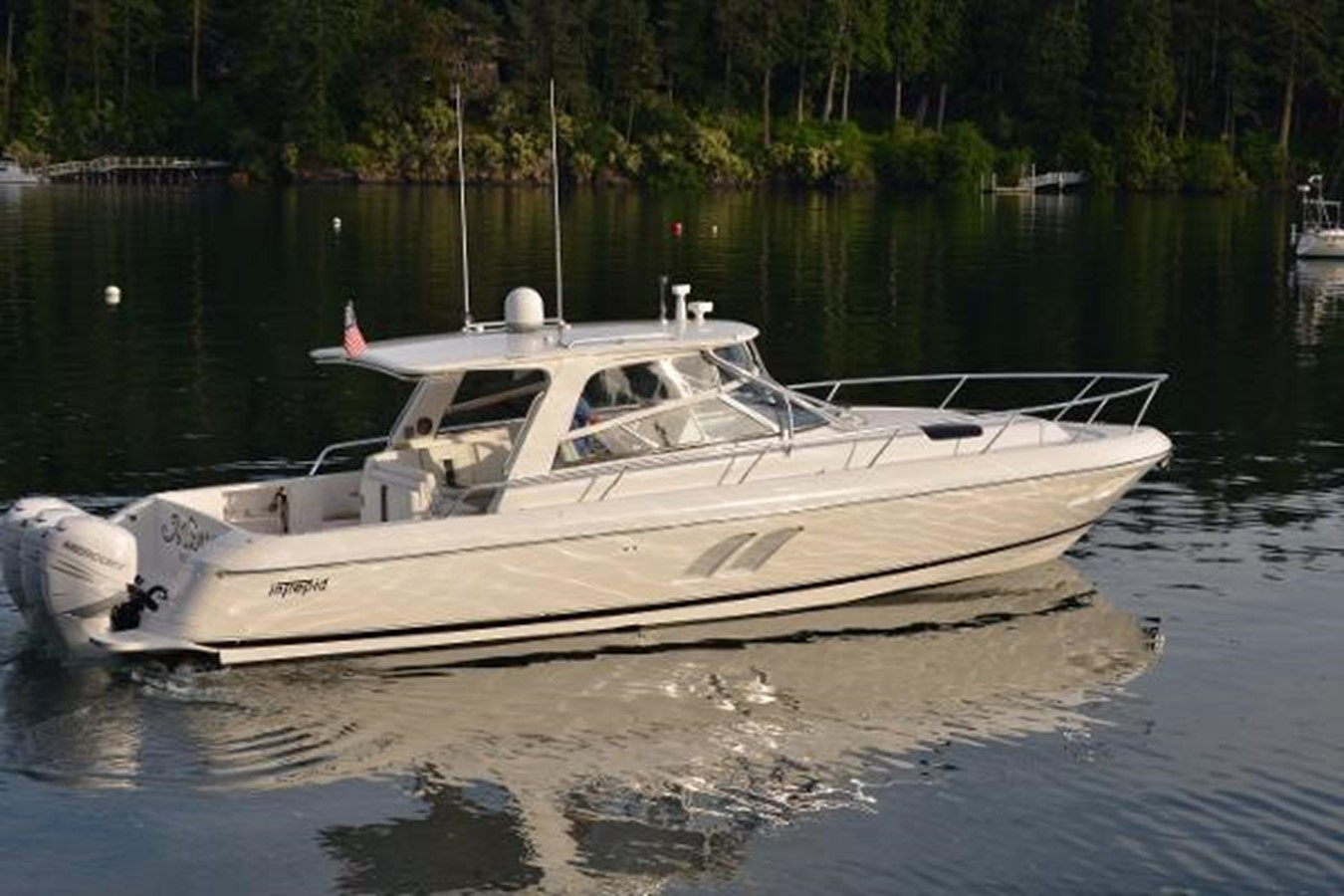 2010 INTREPID  Cruiser 1882674