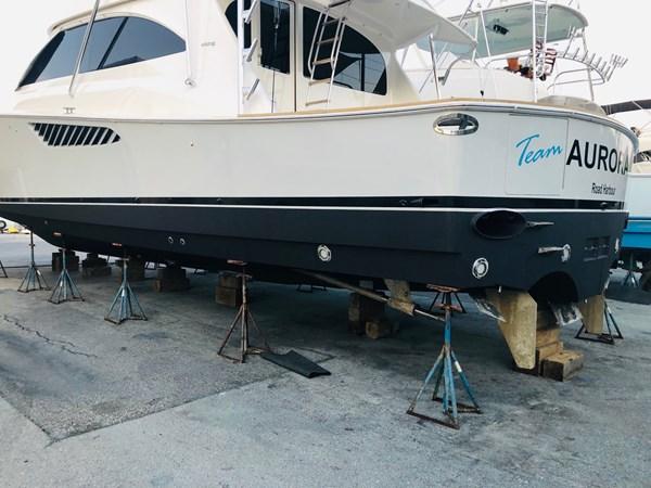 2013 66 Viking Bottom Paint + Propspeed 2013 VIKING 66 Convertible Sport Fisherman 2563101