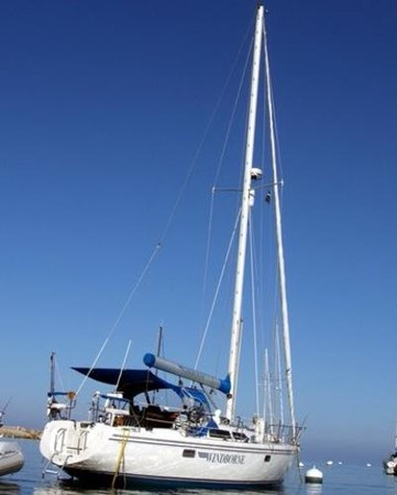At Island 1993 CATALINA 36 Cruising Sailboat 2038715