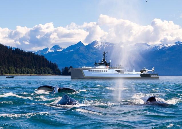 2020 DAMEN  Mega Yacht 2673987