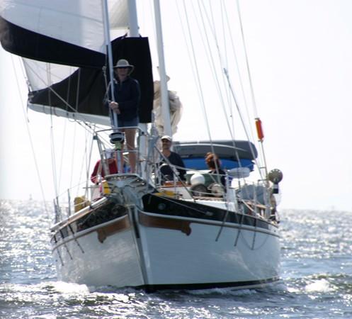 1981 MARINE TRADER  Classic Yacht 2438313