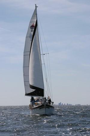 1981 MARINE TRADER  Classic Yacht 2438314