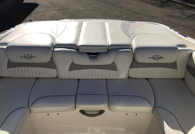 2009 STINGRAY  225 CR Runabout 2501087