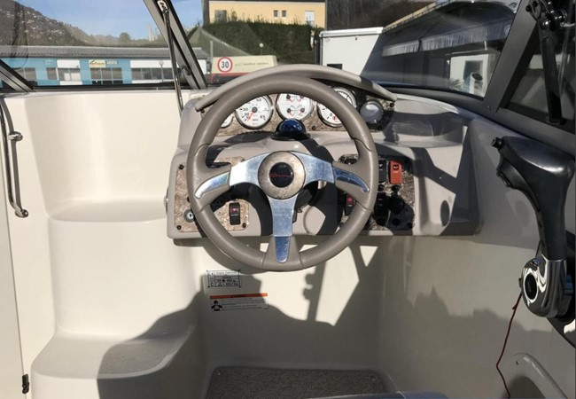 2009 STINGRAY  225 CR Runabout 2501089
