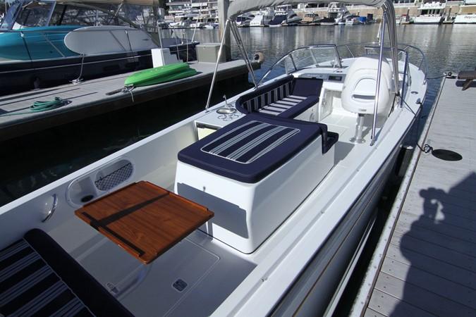 2015 Vanquish Boats  24 RA Runabout 2525430