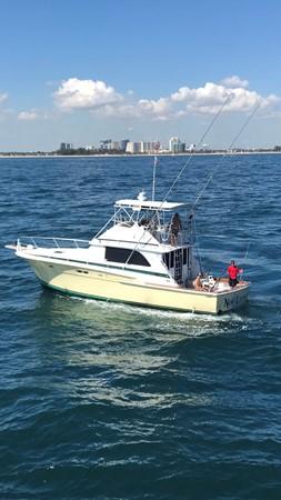 1974 BERTRAM  Sport Fisherman 2601556