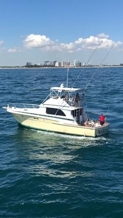 1974 BERTRAM  Sport Fisherman 2601564