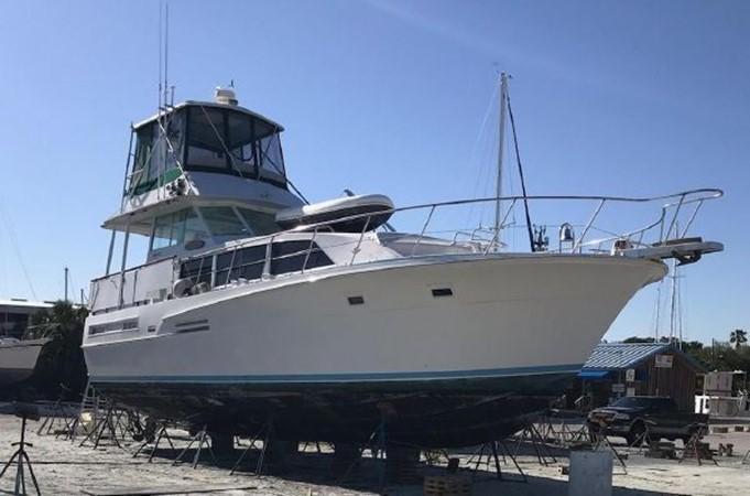 1981 BERTRAM Flush Deck Motor Yacht 2579771