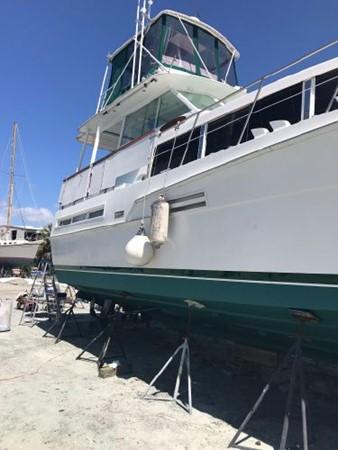 1981 BERTRAM Flush Deck Motor Yacht 2579774