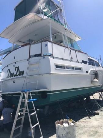 1981 BERTRAM Flush Deck Motor Yacht 2579777