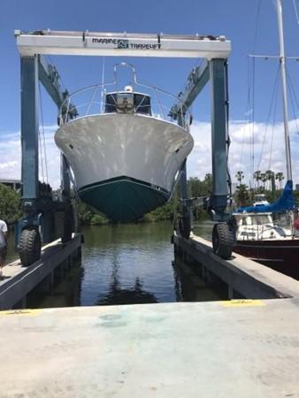 1981 BERTRAM Flush Deck Motor Yacht 2579778