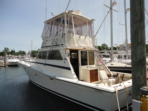 1981 VIKING 40 Convertible  2647276