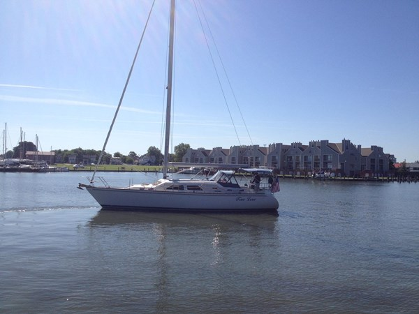 Port side at the dock 2005 CATALINA Catalina Morgan 440 DS  2647441